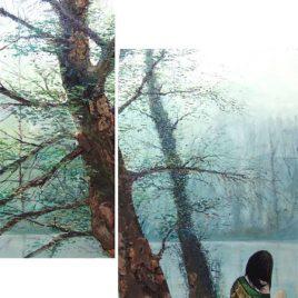 Bosque Cuadro