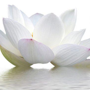 Mantra (Adi Shakti)
