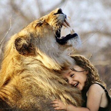 León animal de poder