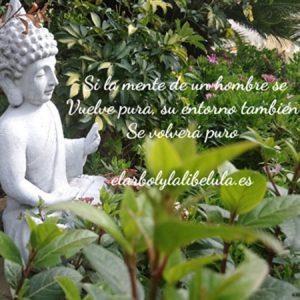Buda de la pureza pensamiento ositivo